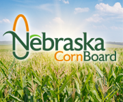Nebraska Corn Board seeks director for District 3