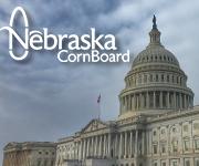 Nebraska Corn dissatisfied with final RVO rule