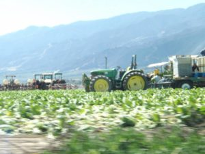 Farm workers key to keeping US fed are wary of virus spread