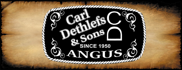Carl Dethlefs & Sons