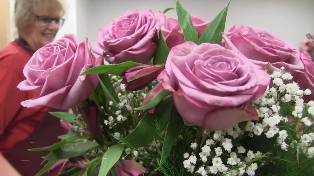 Petal to Metal: Rose Inspections Didn't Stop During Shutdown