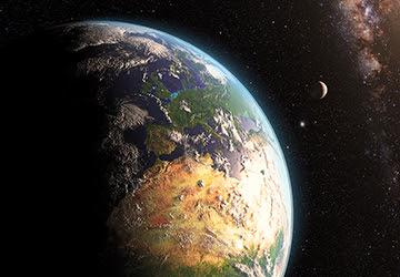 Starship Nematode