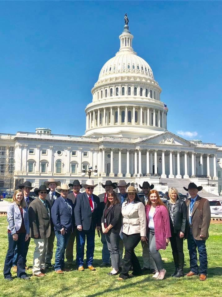 Missouri Cattle Producers Participate in National Legislative Conference