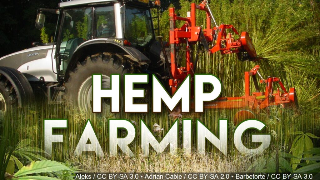 Nebraska Grower Adds Hemp in Bid to Reap More Profit From Land