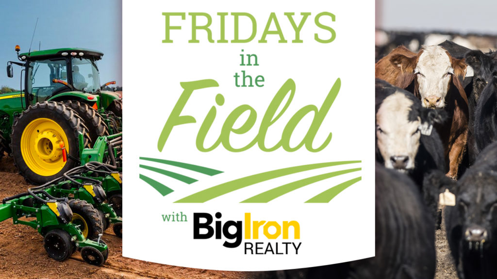ROUND ONE RECAP: Big Iron Realty's Fridays in the Field