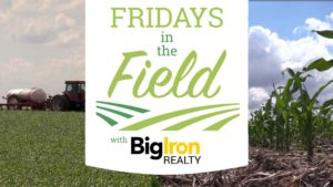 Big Iron Realty Friday's In The Field: Corn Detasseling, Cover Crops and Listening