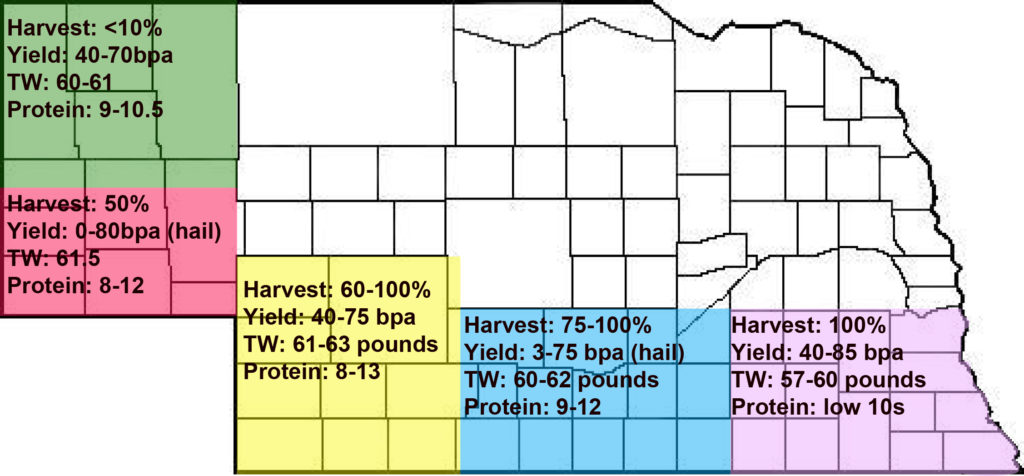 Nebraska Wheat Crop Report (July 29, 2019)