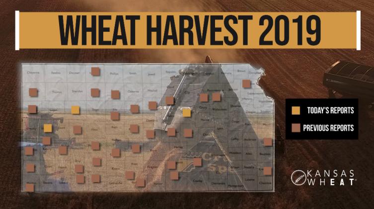 Day 14, Kansas Wheat Harvest Report