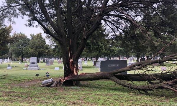 Thunderstorm wind damage in Cambridge