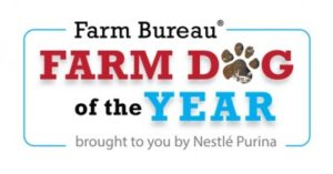 AFBF Accepting Farm Dog of the Year Nominations