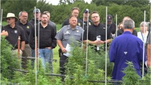 VIDEO: K-State, KDA equip law enforcement with knowledge about industrial hemp