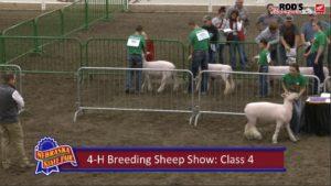 LIVE: Nebraska State Fair - 4-H and FFA Livestock Shows (Saturday, Aug. 31, 2019)