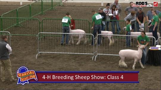 LIVE: Nebraska State Fair – 4-H and FFA Livestock Shows (Saturday, Aug. 31, 2019)
