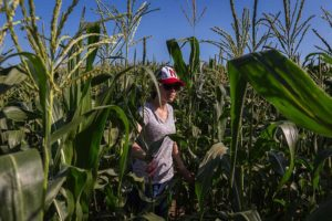 National Farm Safety and Health Week on Sept. 15-21 to focus on women in agriculture