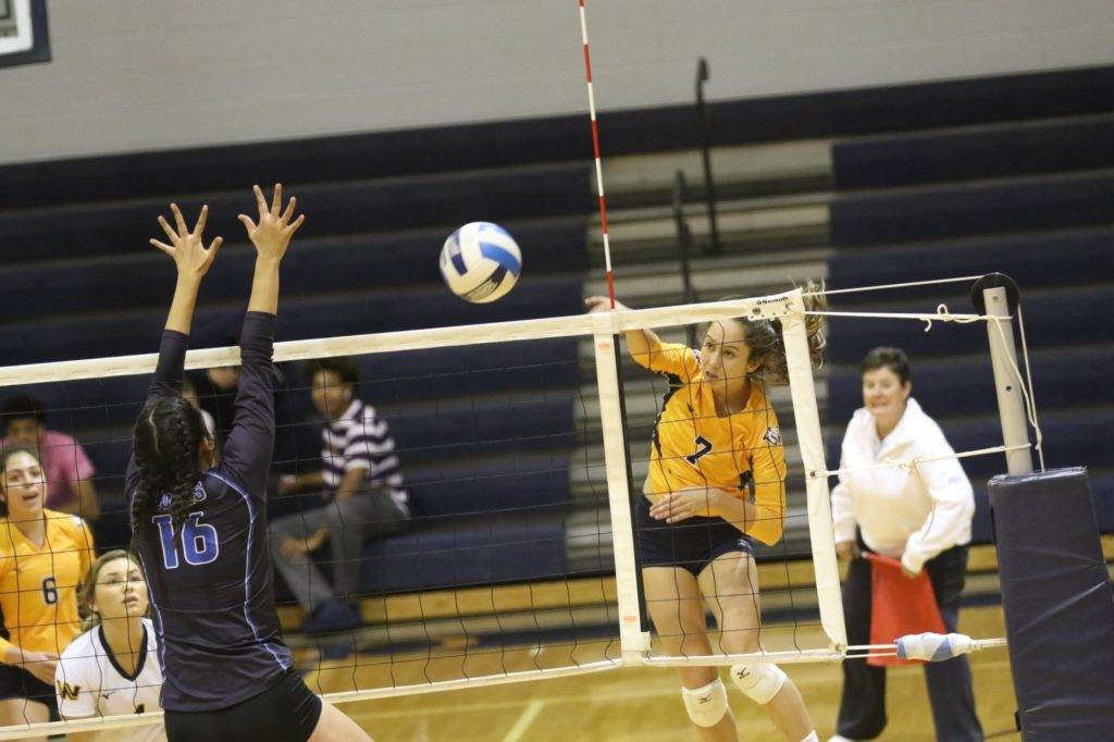 After Friday postponement, Cougar volleyball sweeps Lamar
