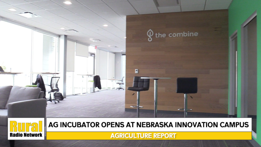 Ag Incubator Opens at Innovation Campus, Pumpkin Facts for Halloween –  Ag News Update (10/31/19)