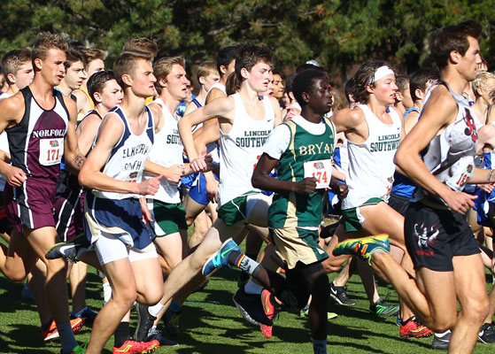 State Cross Country Begins Friday