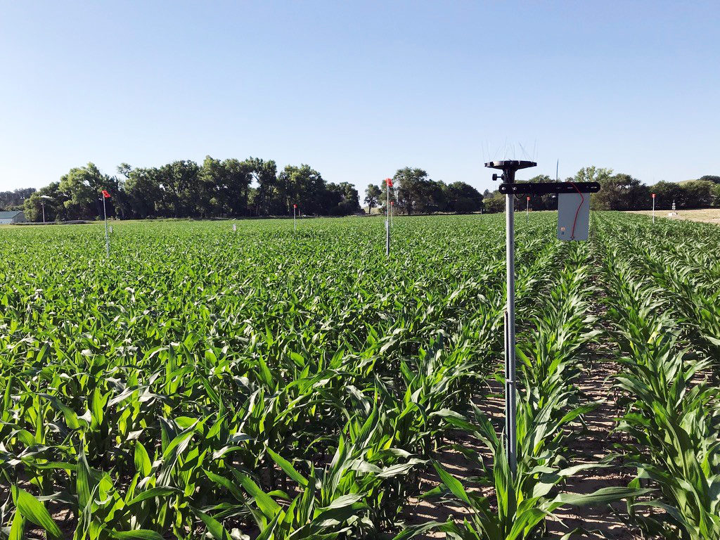 Researchers to tackle irrigation decision-making with help of USDA grant