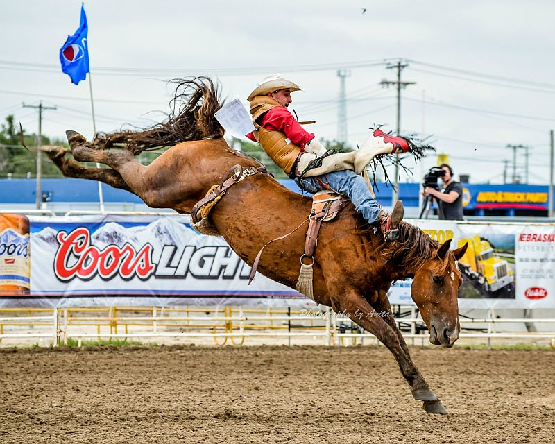 Nebr cowboy is Bareback Riding Rookie of the Year winner