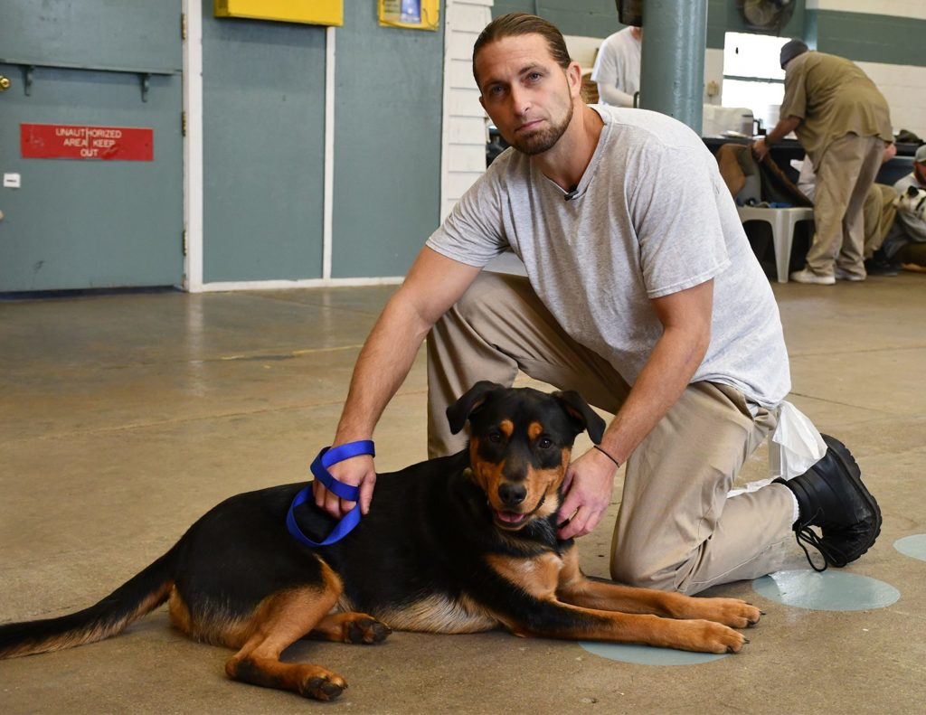 NDCS partner program reaches milestone in training pups