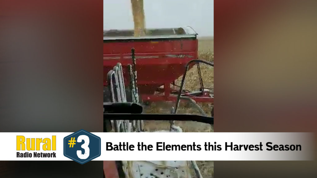 Snow angels in the corn field? Harvest19 is proving that anything is possible – Friday Five (11/1/19)