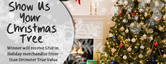 Show us your Christmas Tree