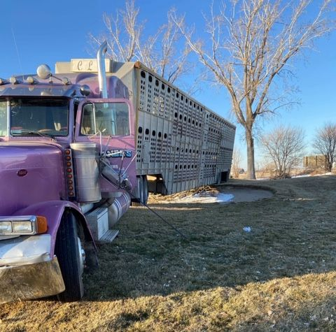 More information released on cattle truck accident in Holdrege