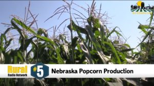 National Popcorn Day - Friday Five (1.17.20)