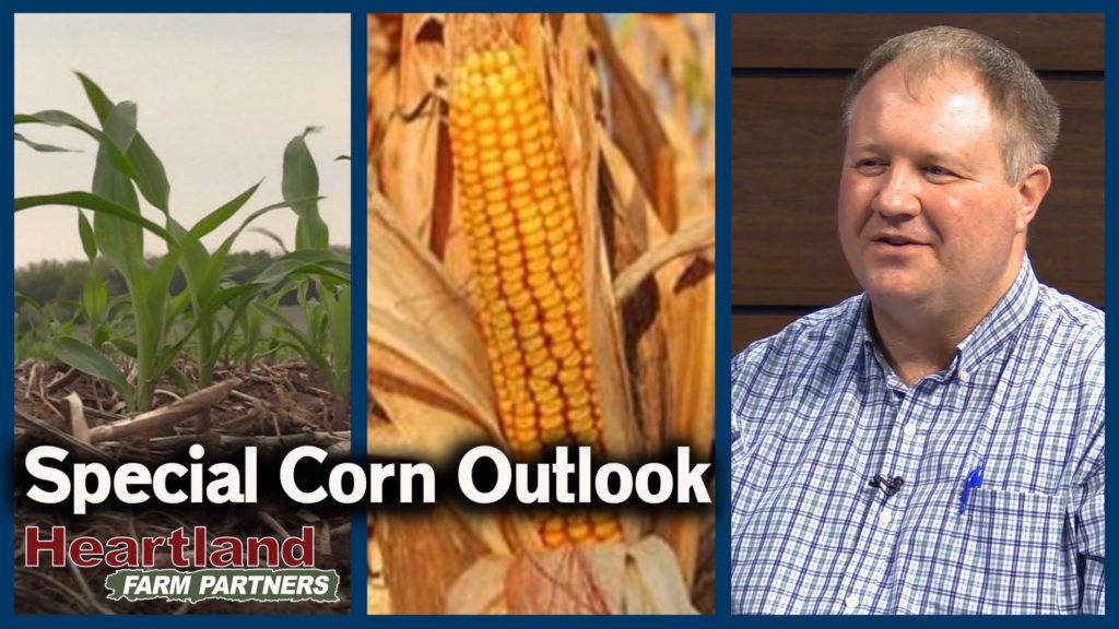 VIDEO: Corn Market Outlook for 2020