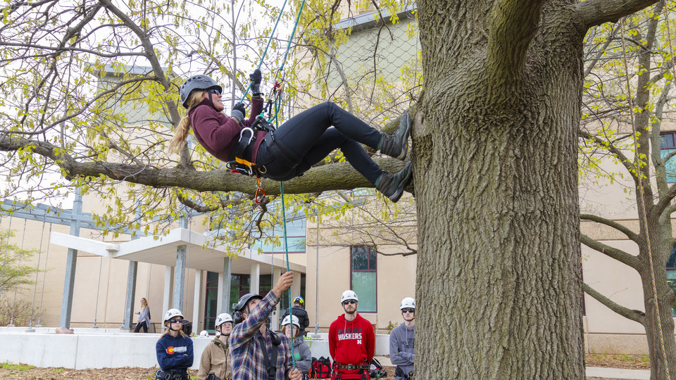 UNL approved for new forestry major