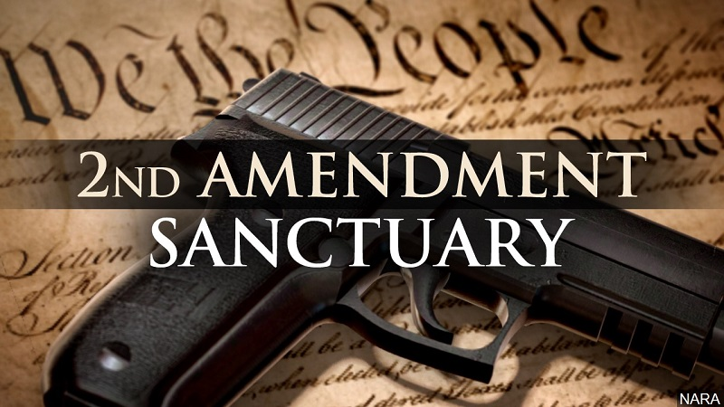 Second Amendment 'Sanctuary' Movement Gaining Steam in Panhandle