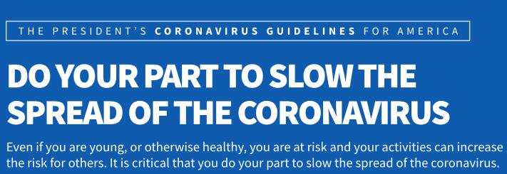 The President's Coronavirus Guidelines for America