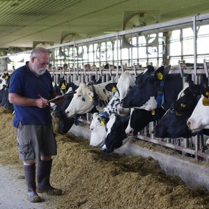 NMPF Coronavirus Page Adds Resources for Dairy Employers, Veterinarians