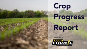 KAAPA Ethanol Crop Progress Report For The Week Of May 26