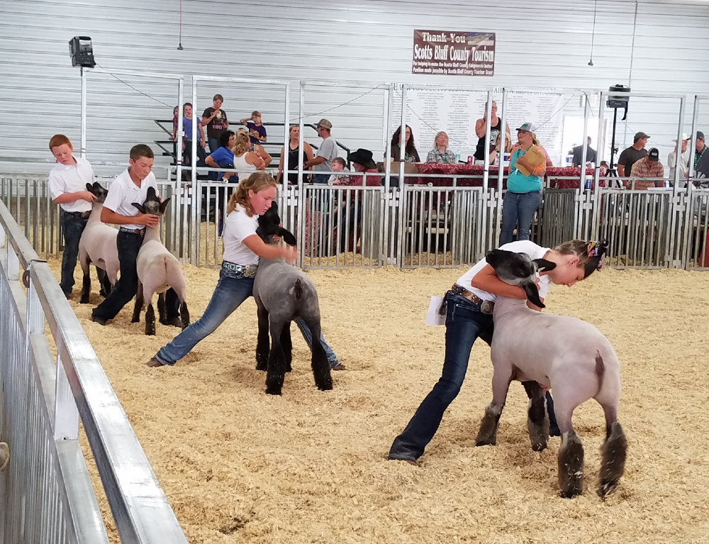 Nebraska governor's DHM allows county fairs to move forward