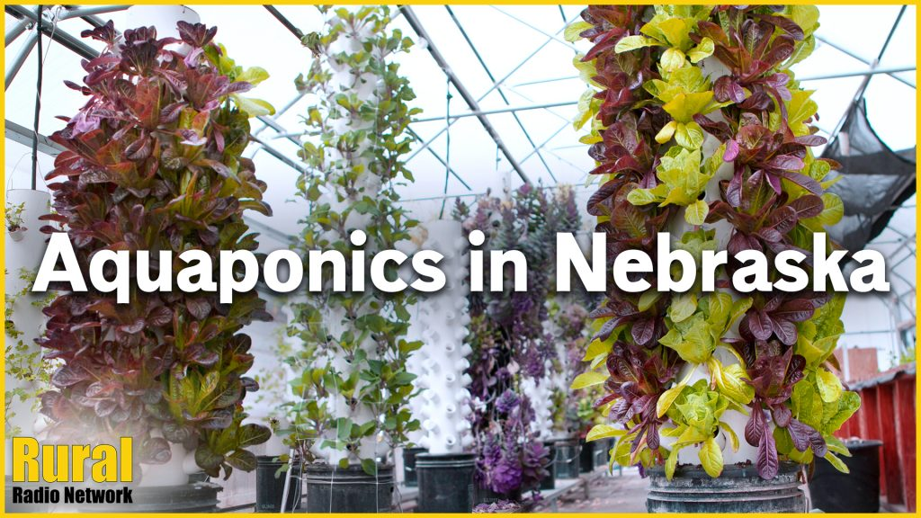 (VIDEO) Nebraska aquaponics grower finds ways to add value despite event cancellations