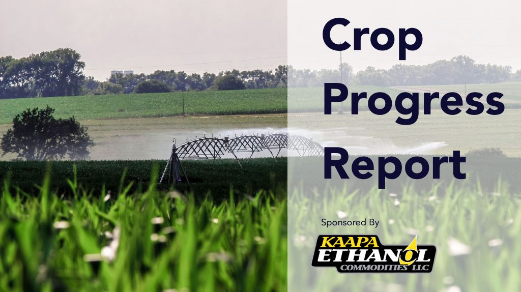 Audio: KAAPA Ethanol Crop Progress Report For The Week Of July 20