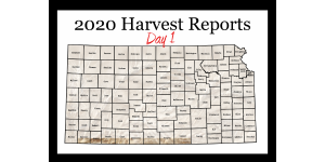 Day 1, Kansas Wheat Harvest Report