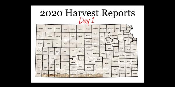 Day 1, Kansas Wheat Harvest Report