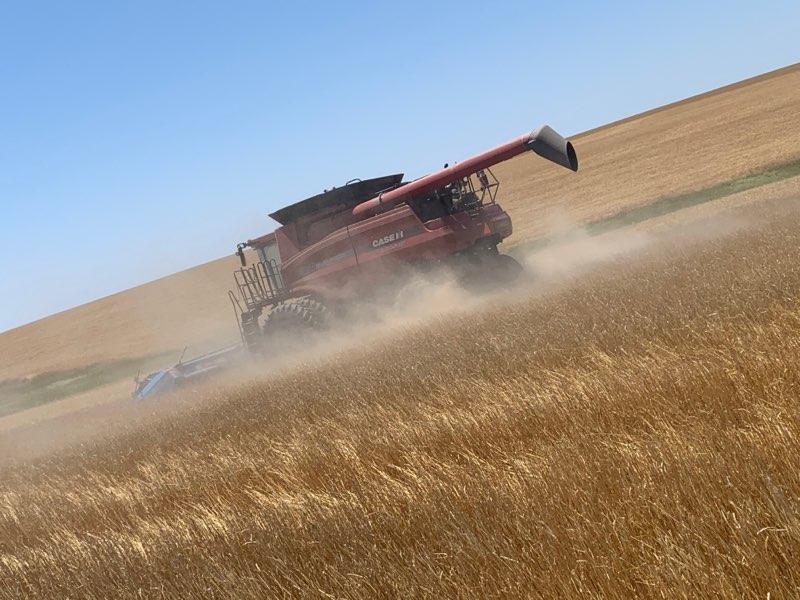 Wheat Harvest Begins Across Nebraska