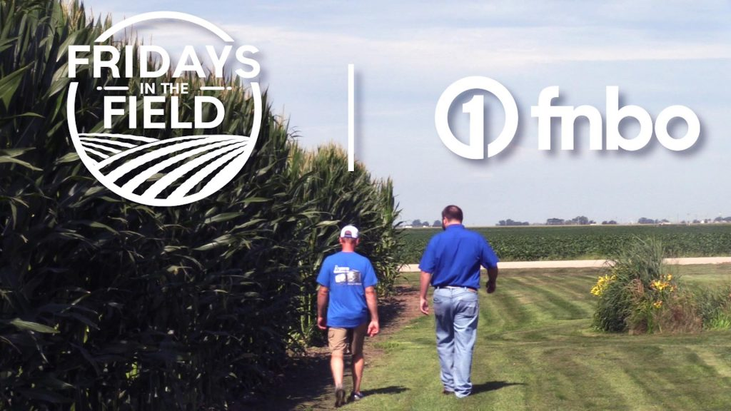 Crop update from North Bend, Nebraska | Fridays in the Field with FNBO | Ep. 9