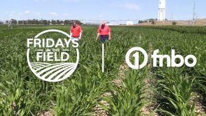 A closer look at water management   Fridays in the Field   Ep. 7