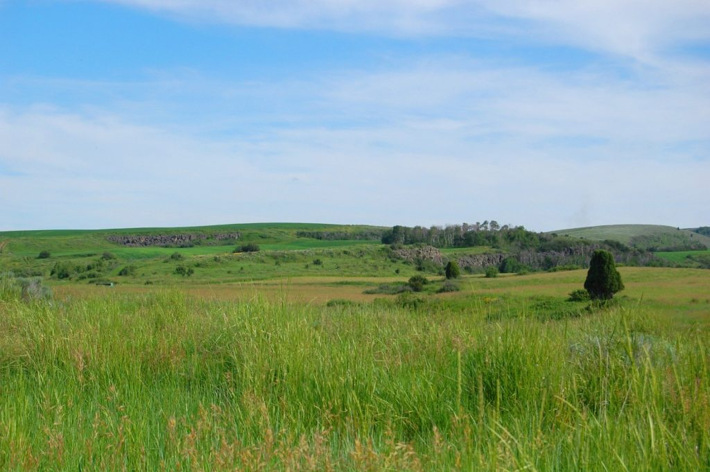 NET Grant to Fund Game and Parks Grassland Habitat Improvement Project