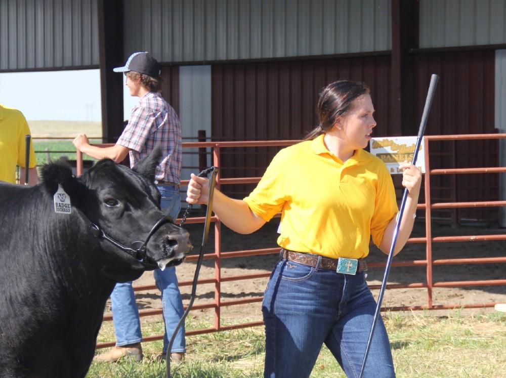 Audio: Morrill County Fair: beef show