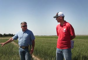 Virtual field day online for UNL High Plains Ag Lab