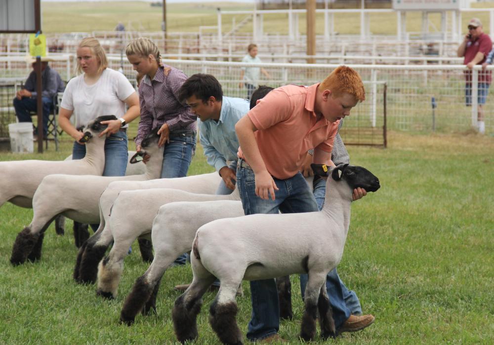 Audio: Sioux County Fair July 24