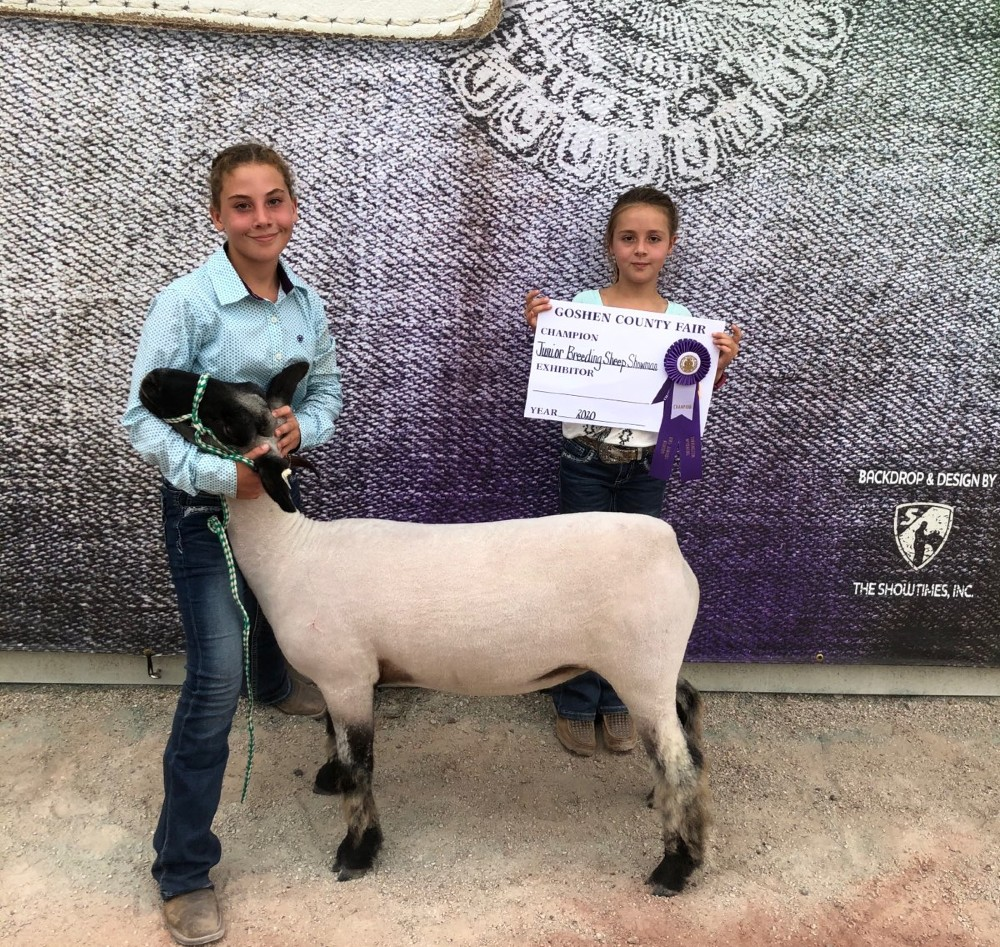 Audio: Goshen County Fair – sheep, rabbits, and goats