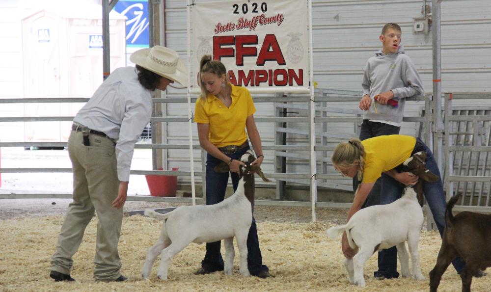 Audio: Scotts Bluff County Fair – July 30, goat show