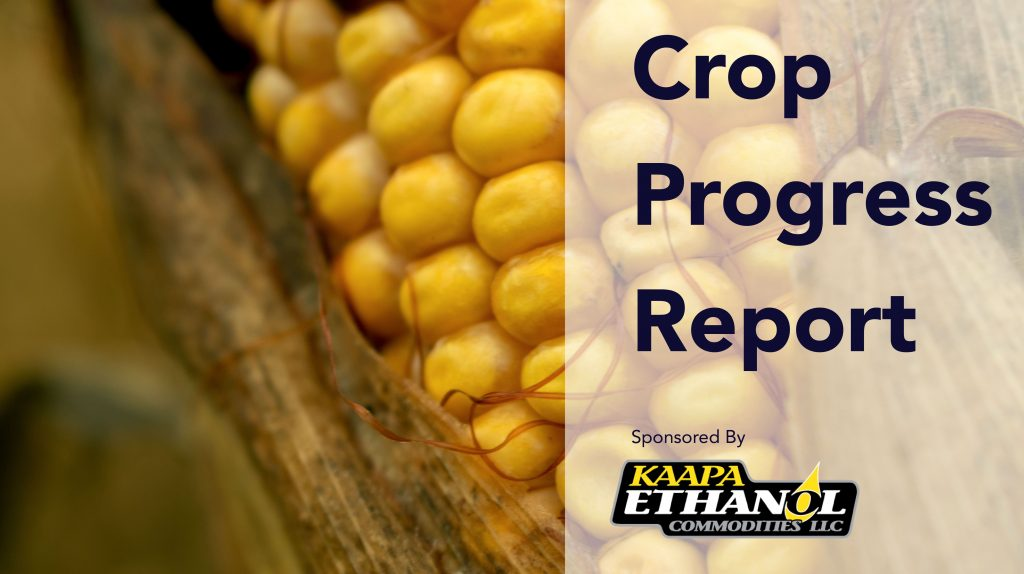 Audio: KAAPA Ethanol Crop Progress Report For The Week Of September 14