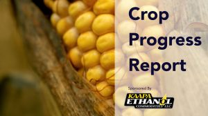 Audio: KAAPA Ethanol Crop Progress Report For The Week Of September 21
